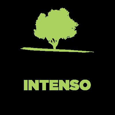 Scopri l'Olio extra vergine di oliva sapore intenso del Frantoio Pace  Leone - Olio dal 1910 - www.frantoiopace.com